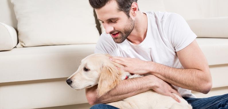 Lær selv hundemassage