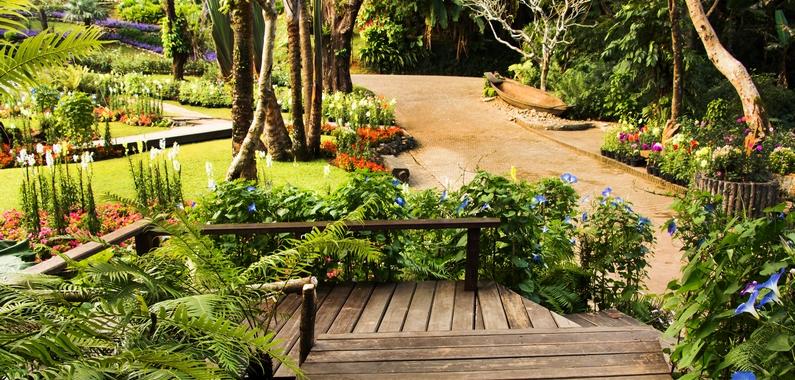 Lav smukke haver som havemand