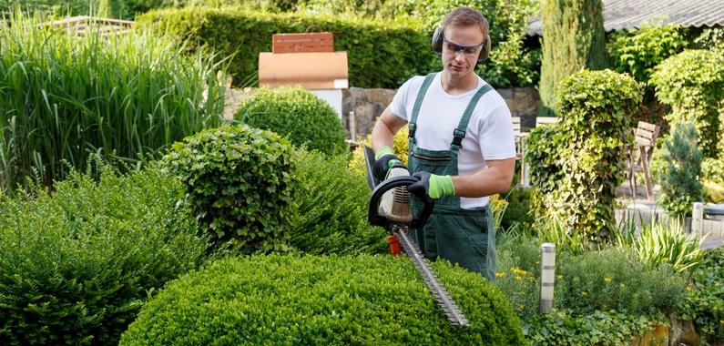 Tag erhvervsuddannelsen som gartner